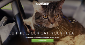 Groupon offers Grouber, a cat taxi service